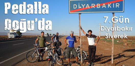 pedalla-doguda-7-gun-banner