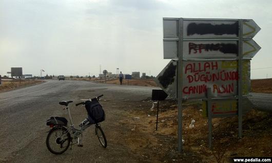 pedalla-doguda31
