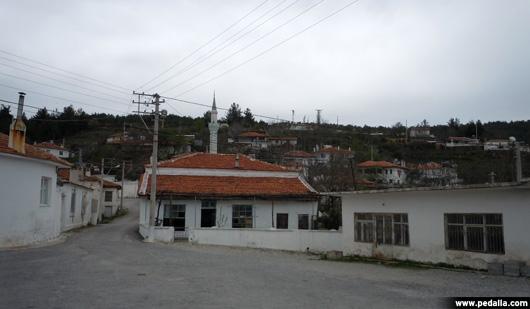 DSCN9297