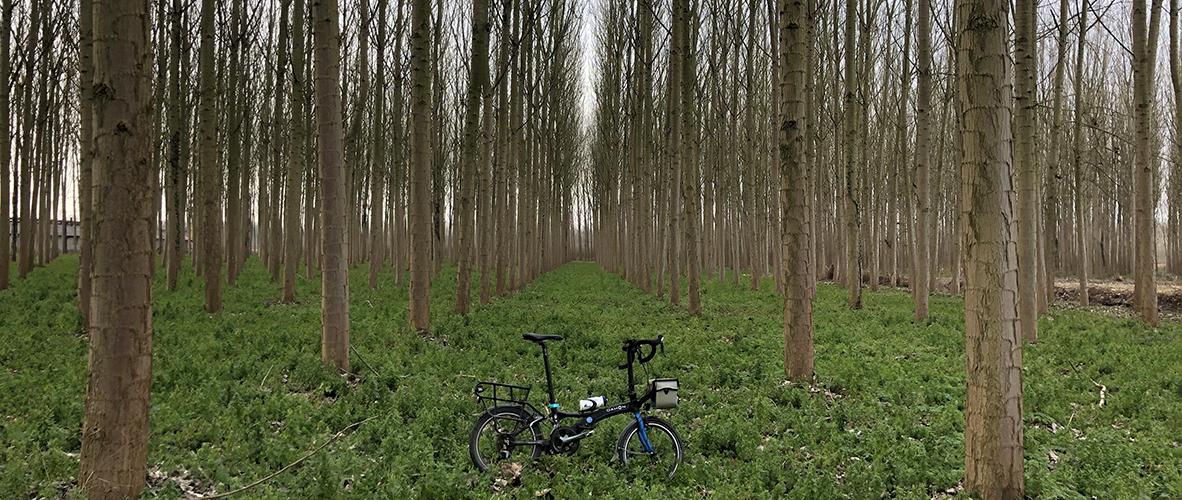 Taraklı, Geyve, Pamukova, Karapürçek, Akyazı Bisiklet Turu
